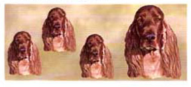 Dog Wrap - Irish Setter