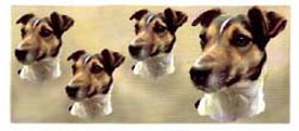 Dog Wrap - Jack Russell Smoot