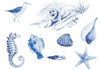 Blue Delft Nautical Bits - Shells, Seagull, Fish