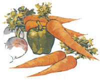 Carrots, Turnips, Green Pepper