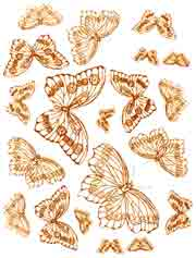 Bright Gold Butterflies