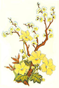Tree with Floral Yellow Flowers