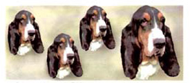 Dog  Wrap - Bassett Hound