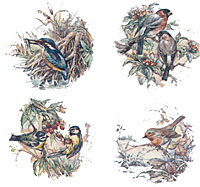 Assorted Birds Set of 4