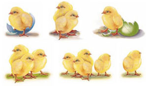 Easter - Chick Bits