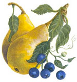 Fruits- Pear and Blueberry Blueberries