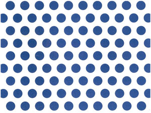 Overall Design - BLUE DOT Chintz