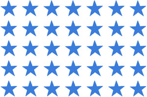 Overall Design - Blue Star Chintz